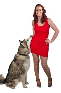 A Siberian Husky big enough to reach a woman's waist