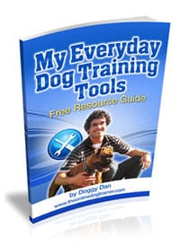 Everyday_Dog_Training_Tools_Cover