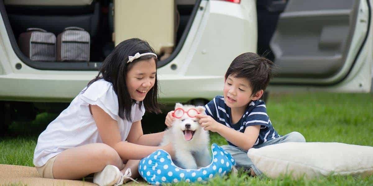 Siberian-Husky-with-Kids