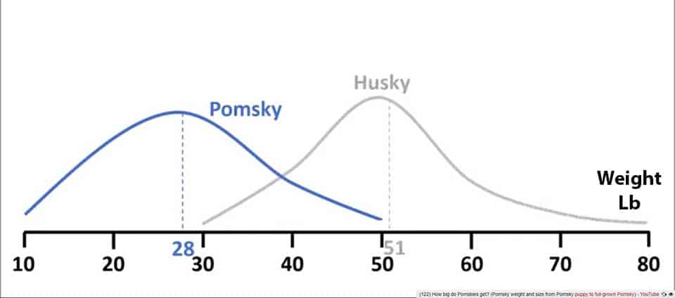 Weight graphs in Lb showing Pomsky in comparison to Husky